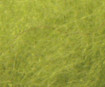 Vėlimo juostelė 10mm 3m 85 may-green blister.