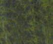 Vėlimo juostelė 10mm 3m 13 dark green blister.