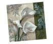 Servetėlės 33x33cm 20vnt. 3 sluoksnių White Beauties