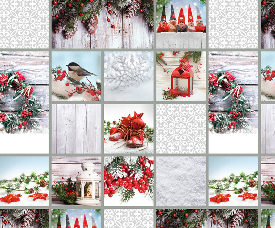 Kartong pildiga Ursus 49.5x68cm/300g Cottage white/red