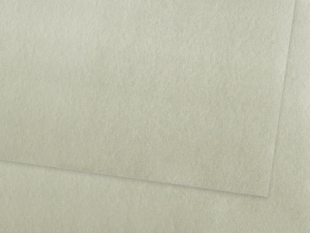 Värviline paber Ursus A4/130g 89 glossy silver
