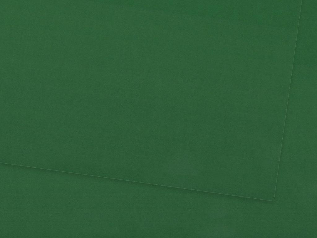 Kartonas Ursus 70x100cm/300g 55 dark green