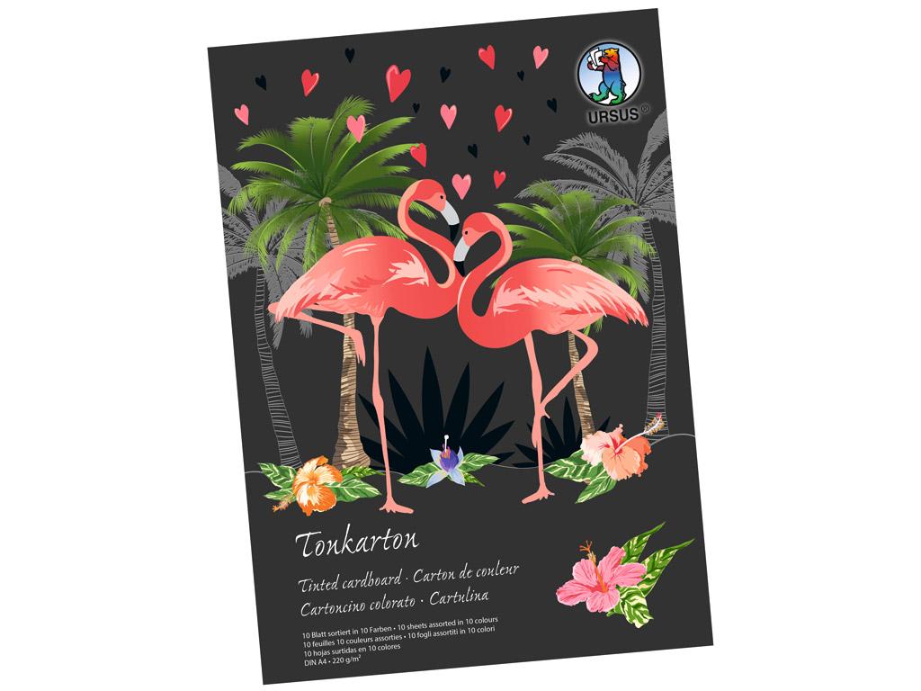 Kartonas spalvotos  Ursus Special Edition A4/220g 10 lapų