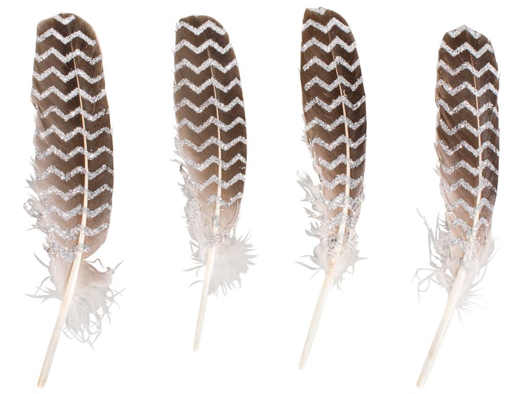 Dekoratyvinė plunksna Rayher su žėrinčia spauda 17-19cm 4vnt. sidabrinė