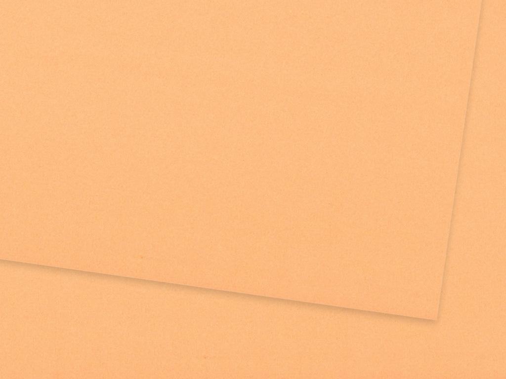 Kartonas Ursus A4/300g 16 apricot