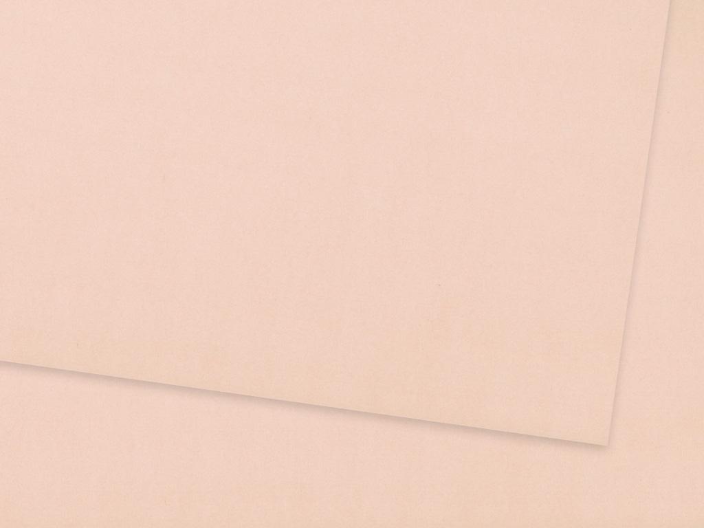 Kartonas Ursus A4/300g 29 antique pink