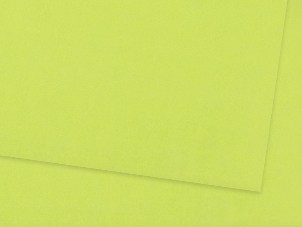 Kartonas Ursus A4/300g 51 light green