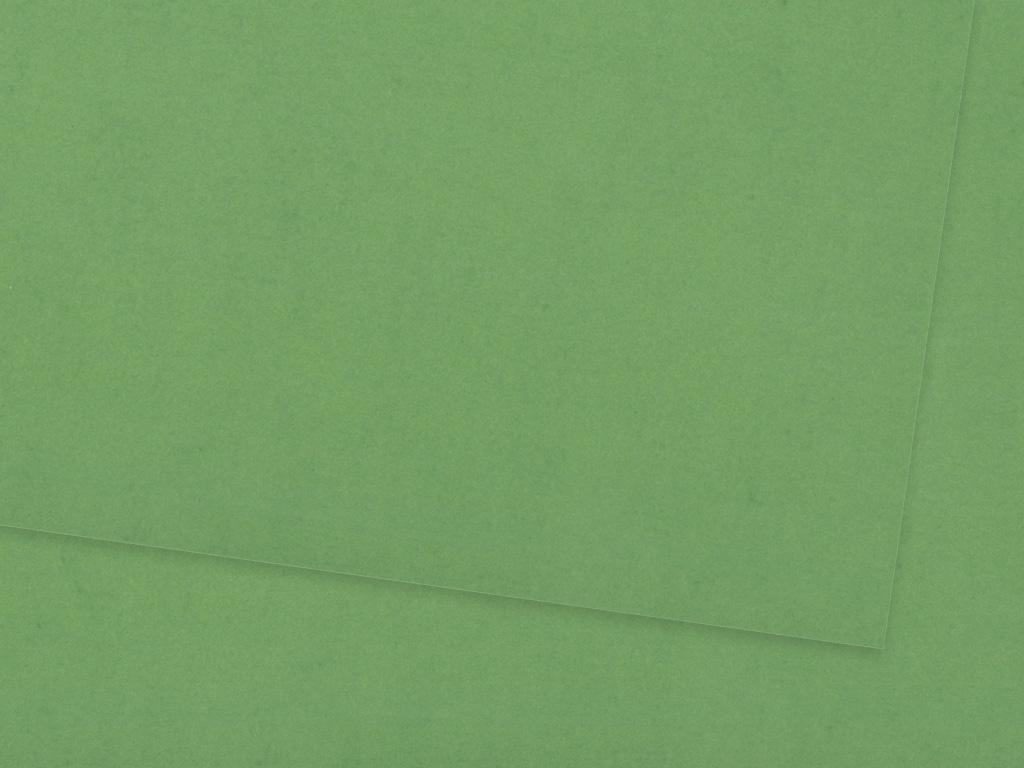 Kartonas Ursus A4/300g 53 lime green