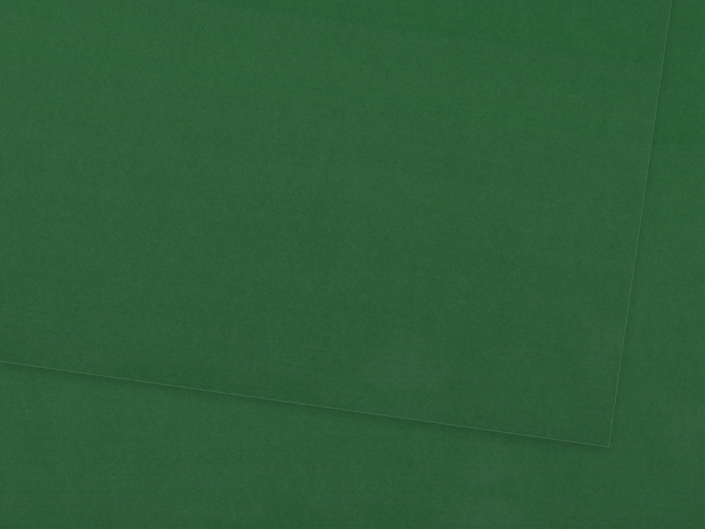 Kartonas Ursus A4/300g 55 dark green