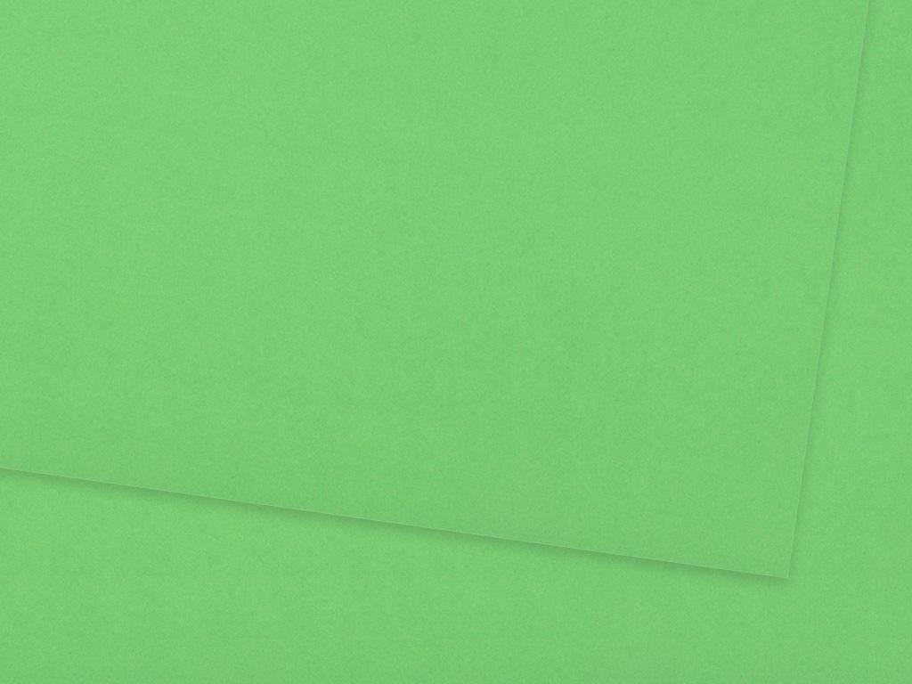 Kartons Ursus A4/300g 58 grass green