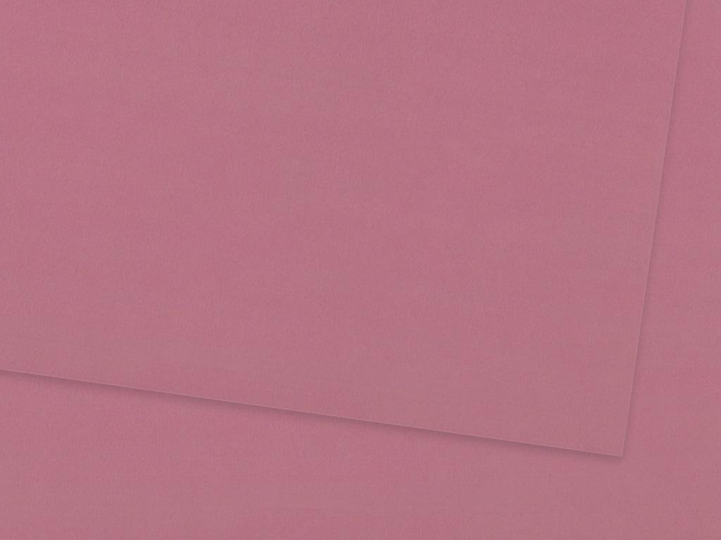 Kartonas Ursus A4/300g 62 pink