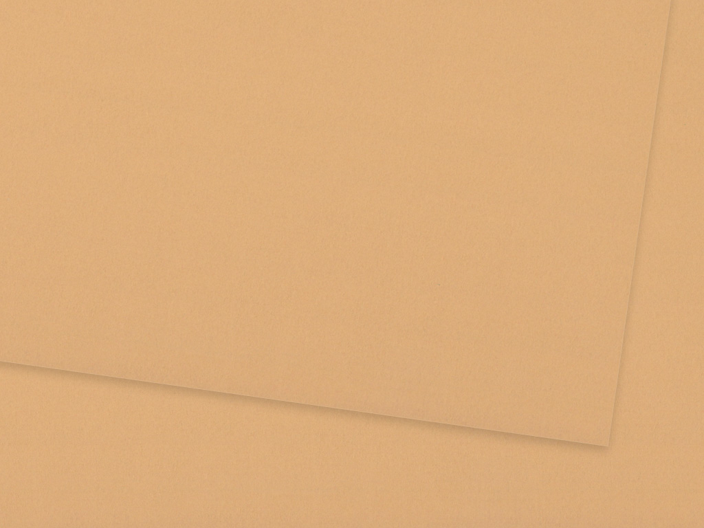 Kartonas Ursus A4/300g 70 light brown