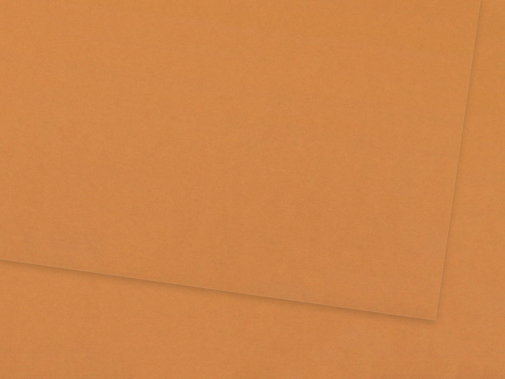 Kartonas Ursus A4/300g 75 fawn brown