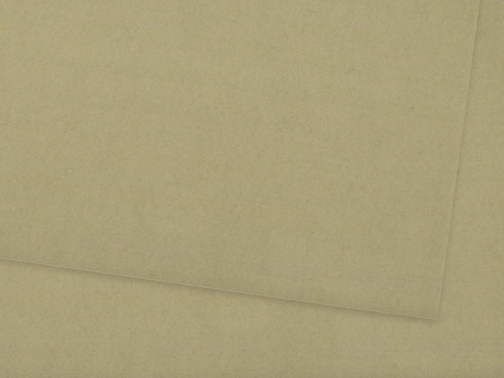 Kartonas Ursus A4/300g 76 taupe