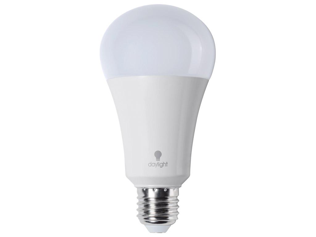 LED spuldze (dienasgaismas) Daylight 15W E27